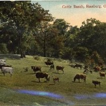 Image of 2008.25.6 Postcard