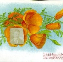 Image of Gold of the poppies