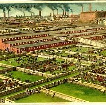 Image of Stock Yards, Chicago, ILL