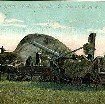 Image of Thrashing the grain, Western Canada