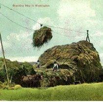 Image of Stocking hay in Washington