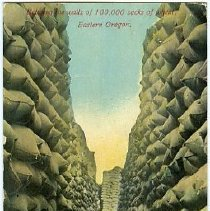 Image of Between the walls of 100,000 sacks of wheat