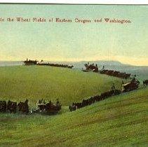 Image of Harvesting in Eastern Oregon & Washington