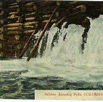Image of Salmon Jumping Falls, Columbia River
