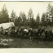 Image of Typical freighting outfit of Central Oregon