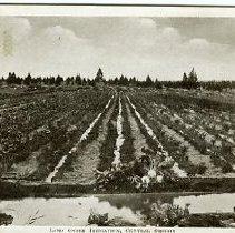 Image of Irrigation Central Oregon