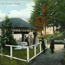 Image of Polar Bear in City Park, Portland