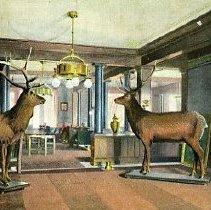 Image of Elks