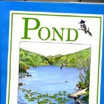 Image of SUMMARY: Observes how a glacial pond and the abundance of plants and animals that draw lie from its change over the course of a year. - book