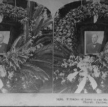 Image of 87.61.35 - stereograph