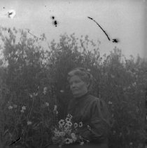 Image of GP4/5.100 - REMARKS:Mrs. M. L. Brown sitting in a chair in a field of flowers, holding a bouquet. Douglas County ca. 1905.