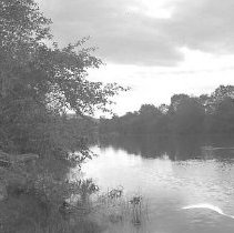 Image of GP5/7.52 - REMARKS:River secen, (South Umpqua river?) with trees on both banks.  OBJECT DATE:ca 1900