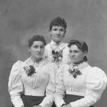 "Image of GP5/7.688 - REMARKS:Studio portrait of three young women. All wear dark skirts with ""Gibson Girl"" blouses with huge puffed sleeves. All three wear matching corsages.
