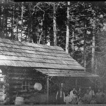 Image of N10424 - COUNT:2