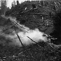 Image of N11534 - COUNT:2  REMARKS:Team of six bulls pulling a string of logs down a skid road.