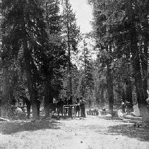 Image of N11692 - REMARKS:Building tables at Scout Camp, Diamond Lake, 1923.