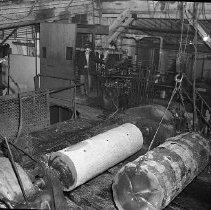 Image of N15481 - REMARKS:Logs being prepared for plywood production; interior of plywood mill. Douglas County, OR, ca 1950s.