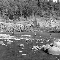 Image of N15616 - REMARKS:Four men fishing in river. Douglas County, OR; ca 1950s.