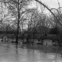 Image of N15646 - REMARKS:Flooded Auto Court on Jackson Street, Roseburg, OR. 1955 flood.