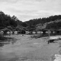 Image of N16438 - REMARKS:Group swimming in river, with lifeguard/teacher watching from shore. Far side of river seems to be a camp - Girl Scout? - with at least one large building, and many rocks (painted?) along the shore. ca. 1960.