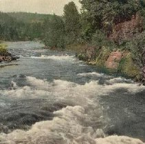 Image of N16601 - COUNT:2