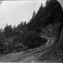 Image of N2170 - REMARKS:Road near Drain, Oregon, ca. 1900s.