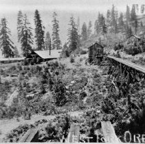 Image of N2677 - REMARKS:Campbell & Sweigert sawmill on the ridge above the S.P. tunnel at West Fork, Douglas Co., Or. 1919. View shows the mill's logging railroad.