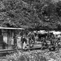 Image of N3207 - REMARKS:logging in Coos County, 1887. Home-made steam locomotive. Bull puncher with team is John Livingston of Douglas County.