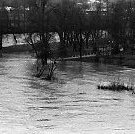 Image of N35.183 - REMARKS:Scenes of flooded land and roads during January 1972.  OBJECT DATE:January 23, 1972