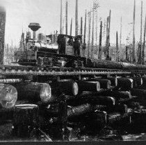 Image of N4264 - REMARKS:2-truck Shay enging (No. 550 ?) skidding logs across a log trestle, Falls City Lumber Co., Polk Co., Or. Part of a 10000 foot load.