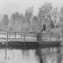 Image of N4531 - Davenport's Ferry, South Umpqua River west of Roseburg, Oregon.