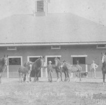 Image of N467 - Shire stallion, The BARON, with mares and foals sired by him. Imported and owned by Mrs. A.G. Ryan (Elizabeth Dixon Irving Ryan) (Dixon Family)