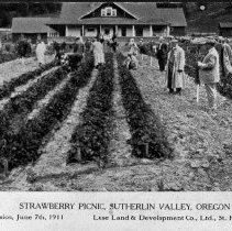 "Image of N4680 - REMARKS:Postcard view: ""STRAWBERRY PICNIC, SUTHERLIN VALLEY, OR. Excursion, June 7th, 1911. Luse Land & Development Co., Ltd., St. Paul, Minn."" Reverse: ""En Route via the ' Spitzpippen Special.""