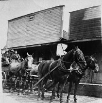 Image of N7746 - REMARKS:A four-horse team in front of the Camas Valley Post Office, 1913. Left to right: Roy Sales, William G. Friend, and Schiller Hermann.