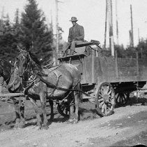 Image of N8094 - COUNT:2
