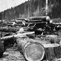 Image of N9099 - REMARKS:McKenzie River Country (may be Pope and Talbot). Shows logs loaded on flat cars. A drag saw and wood box equipment are in the foreground.