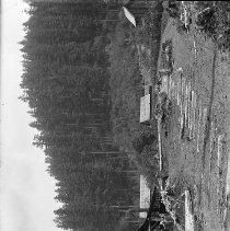 Image of Mooney sawmill