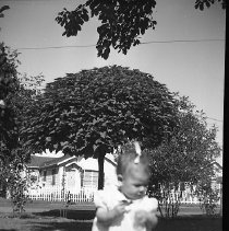 Image of N17318 - A little girl probably Cheryl Rae Dailey??? From The Weston Dailey Collection.