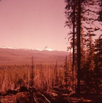 Image of S1002 - Mount Thielson, Diamond Lake Ranger District, Douglas County, OR