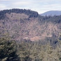 Image of S1049 - Helicopter logging landing East of Cottage Grove