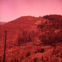 Image of S1059 - The Billick burn area
