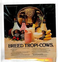 Image of Subway card for Hereford Cows, and Tropi-Cow drinks, 1977.