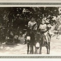 Image of Two Kids Riding Donkeys -