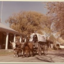 Image of Larned Centennial - 1972  Covered Wagon with Oxen