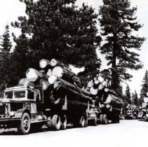 Image of UNRS-P1993-06-0047 - Photograph of Fruit Growers Supply, Lassen operation. Lunch hour Dow Butt 40 M.P. F. G. S. logging road. Photo by Eastman's Studio.