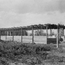 Image of UNRA-P482-184 - This photo shows pens that are part of the Agricultural Experiment Station to house livestock.