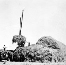 Image of UNRS-P1984-28-51 - [Haying on Dangberg Ranch.]