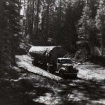 Image of UNRS-P1993-06-0273 - Photograph of Red River Lumber Company. Trucking to reload, 1937, Humbug, California.