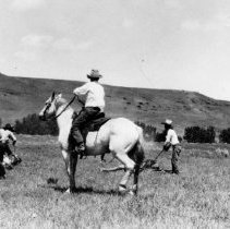 """Image of UNRS-P2270-49 - [""""Mounted on a good little gray horse, Will James drags a calf to the branding crew,.Courtesy Clint and Donna Conradt, all rights reserved."""" (Bramlett, p. 5)]"""