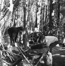 Image of UNRS-P2003-10-284 - [1972 Stream Clean Up.  Kids pulling debris from stream]
